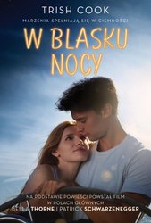 : W blasku nocy - ebook
